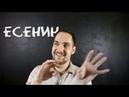 Тип Есенин (ИЭИ)
