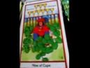 Масть кубков ч2 и масть мечей ч1 в Herbal Tarot
