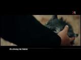 Arash feat. Helena - Dooset daram - M1 (1)