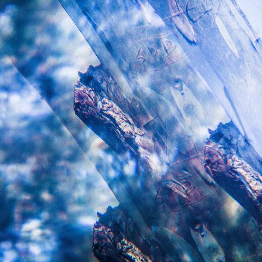 Yppah альбом Tree Ghost