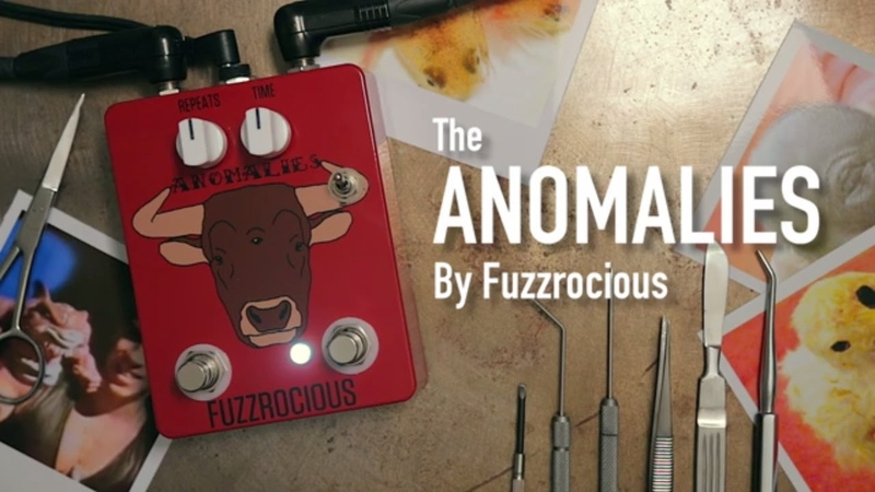 Anomalies by FUZZROCIOUS Pedals