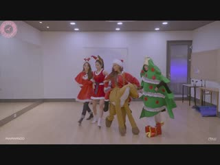 [special] mamamoo 'wind flower' dance practice christmas ver. [рус.саб]