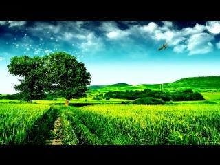 Bobina - Invisible Touch (Ferry Corsten Remix)