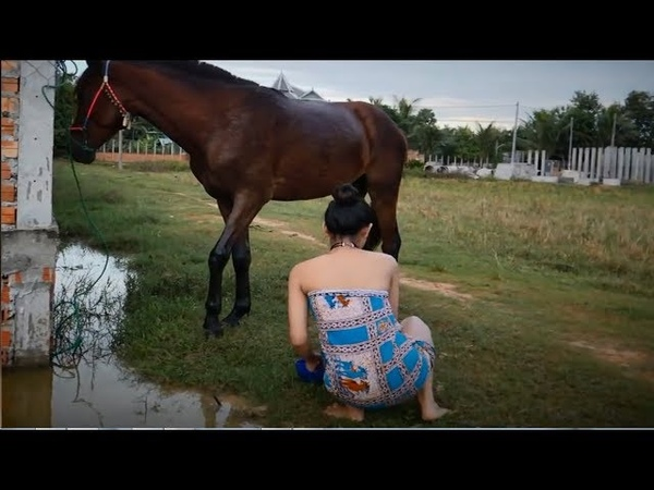Wow Beautiful Girl Take Care of This Horse Horse and a Girl