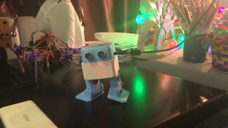 Robot Otto🤖