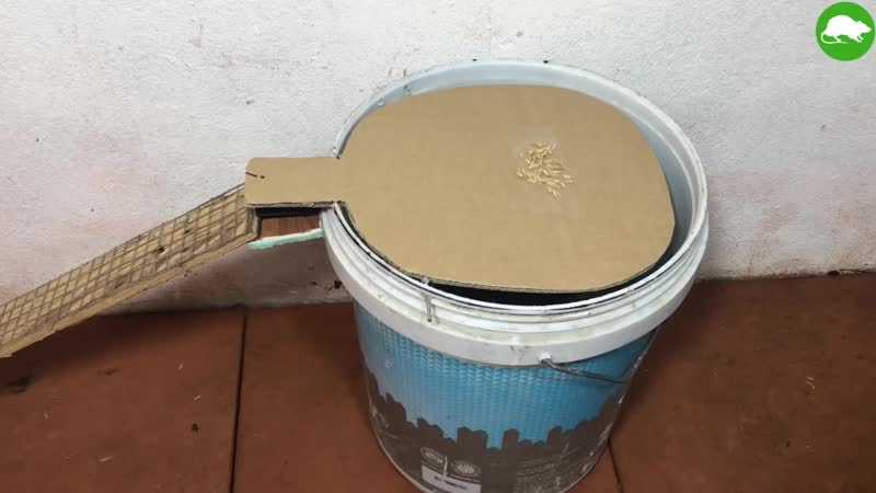 PVC Water Bottle Mouse Trap_DIY make A Mouse Trap Homemade_Mouse Reject_Idea Mou