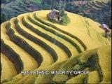 Hani Ethnic Minority Group