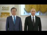 Владимир Путин провел переговоры с президентом Республики Корея Мун Чжэ Ином