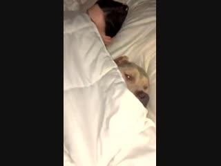 Did he just tuck himself in