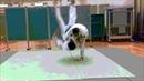 Judo goshi waza腰技 山景中心