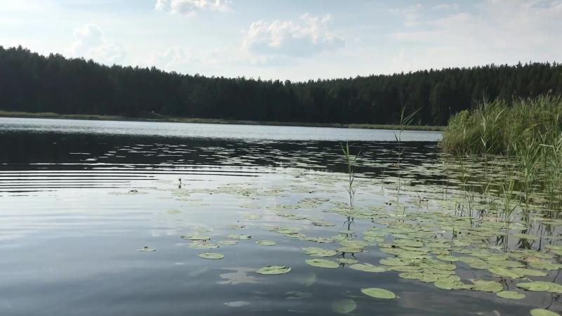 Торсуновское чёрное озеро Очёр 🌱