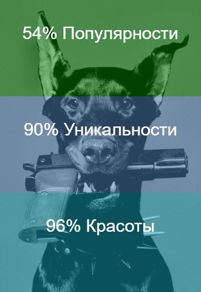 Вениамин Дорохов | Дружковка