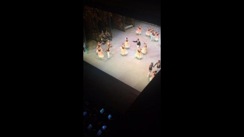 Балет Лебединое озеро под живую музыку Чайковского