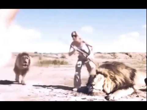 Incroyable KARMA : Voilà Ce Qui Arrive à Une Touriste Qui Abat Un Lion Pour Un Stupide Selfie