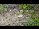 Живущее вне цивилизации племя сняли с помощью дрона