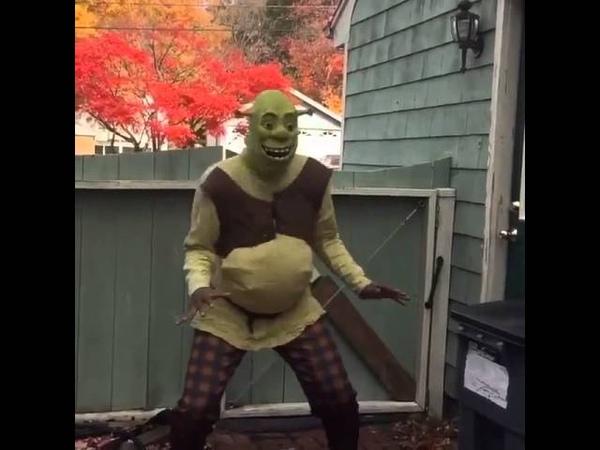 Shrek dancing vine (live action version)