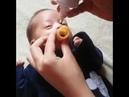 Bebeklere kolay yoldan ilaç nasıl verilir