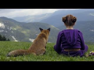 Девочка и лисенок (трейлер)