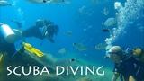 TURKEY scuba diving at Alanya HD