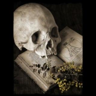 НЕКРОМАНТЫ  СЛУЖИТЕЛИ МАГИИ СМЕРТИ