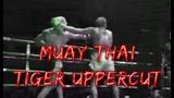 TIGER UPPERCUT!!!