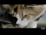 TURBOWEEKEND - TROUBLE IS (TIESTO REMIX)