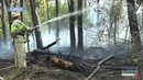 На Харківщині покращився стан пожежної небезпеки