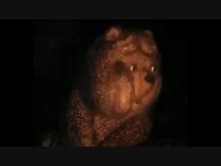 Медведь и Ёж....