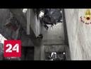 Обрушение моста в Генуе: погибших уже 38 - Россия 24