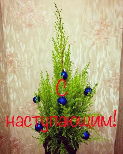 Фото №456246613 со страницы Насти Михеевой
