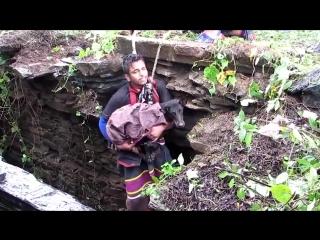 Добрые жители индийского городка спасли собаку упавшую в глубокий колодец