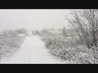 Мороз и холод и бескрайняя тундра