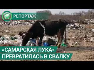 Национальный парк «Самарская лука» превратился в свалку. ФАН-ТВ
