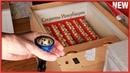 Инкубация цыплят продолжается Проветривание Инкубатора Овоскопирование яиц Как сделать Овоскоп