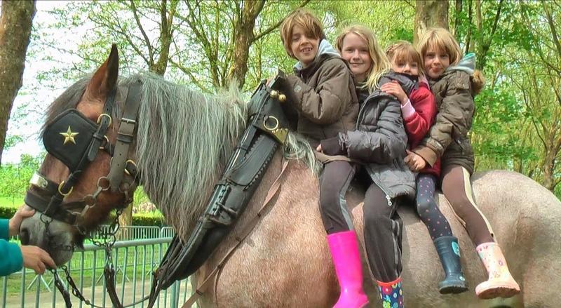 1 Belgian Draft Horse and 4 kids