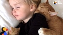 Senior Cat Loves These Little Girls More Than Anything - BAILEY | The Dodo