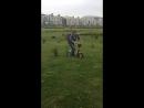 Миша Крюков - укротитель сколковских газонов!