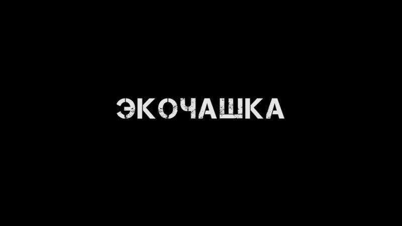Международный кинофестиваль Экочашка