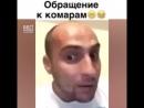 Kaha_obrashhaetsya_k_komaram_(MosCatalogue).mp4