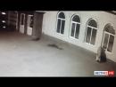 Пенсионерка взламывает и грабит магазин. Криминальные ВЕСТИ Дзержинска.