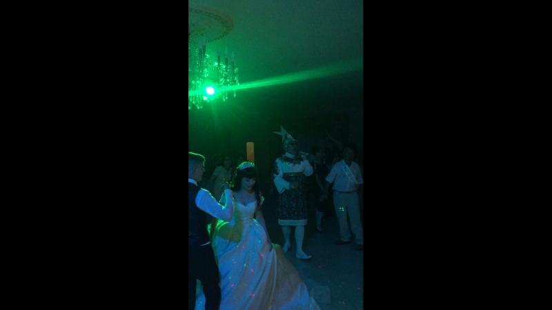 10.08.18. Ростовская обл.г.Волгодонск база отдыха «Донская волна» р-ан «Аристократ» на свадьбе
