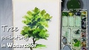 How to Paint A Tree with Watercolor Episode 4