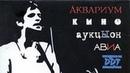 Рок (СССР 1987 HD) Документальный, Музыкальный