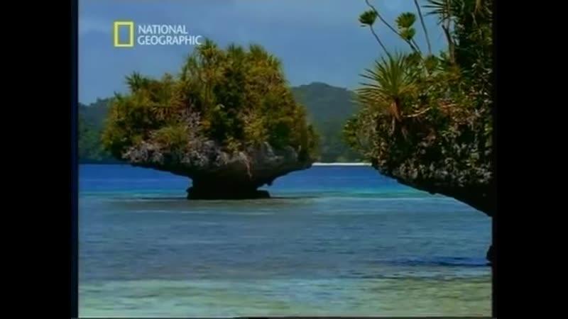 Палау - рай в Тихом океане (National Geographic)
