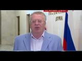 Россия будет ЧЕМПИОНОМ мира по футболу! Жириновский дал свой прогноз на итоги ЧМ