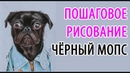 МОПС. Рисуем собаку поэтапно. Пошаговое рисование животных. How to draw Black Pug step by step.