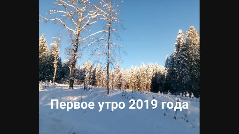 Первое утро 2019 года. Абрамцево