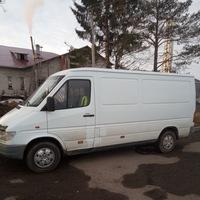 Анкета Александр Савинов