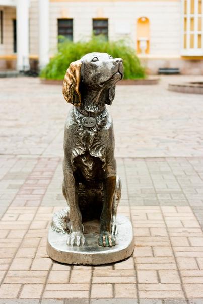 «Белый Бим Черное ухо». Реальная история одного пса.