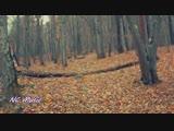 (Electronic) (Manjoo Enigma Style) Wise Hand ft. Nouri - Manschoud (Union Friends remix).